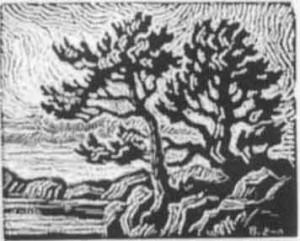 B057  Veteran Pines  1928  nailcut