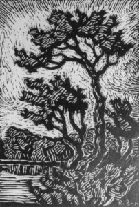 B065 The Silent Stream - 1st state 1930 woodcut