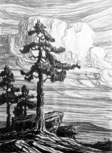 L001  Colorado Pines  1916  lithograph