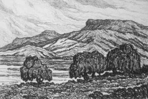 L060 Willows by the Rio Grande 1921 lithograph