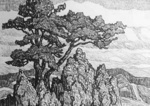 L064 Pine and Juniper 1922 lithograph