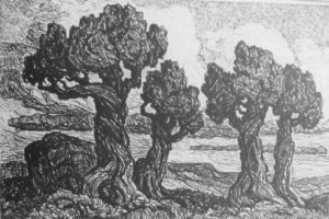 L066 Cedars in the Foothills 1922 lithograph