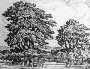 L080 Pool with Trees 1923 lithograph