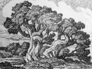 L083 Three Cedars 1923 lithograph