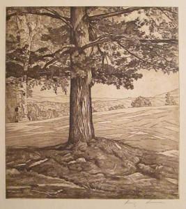 Lucioni L Beyond the Pine